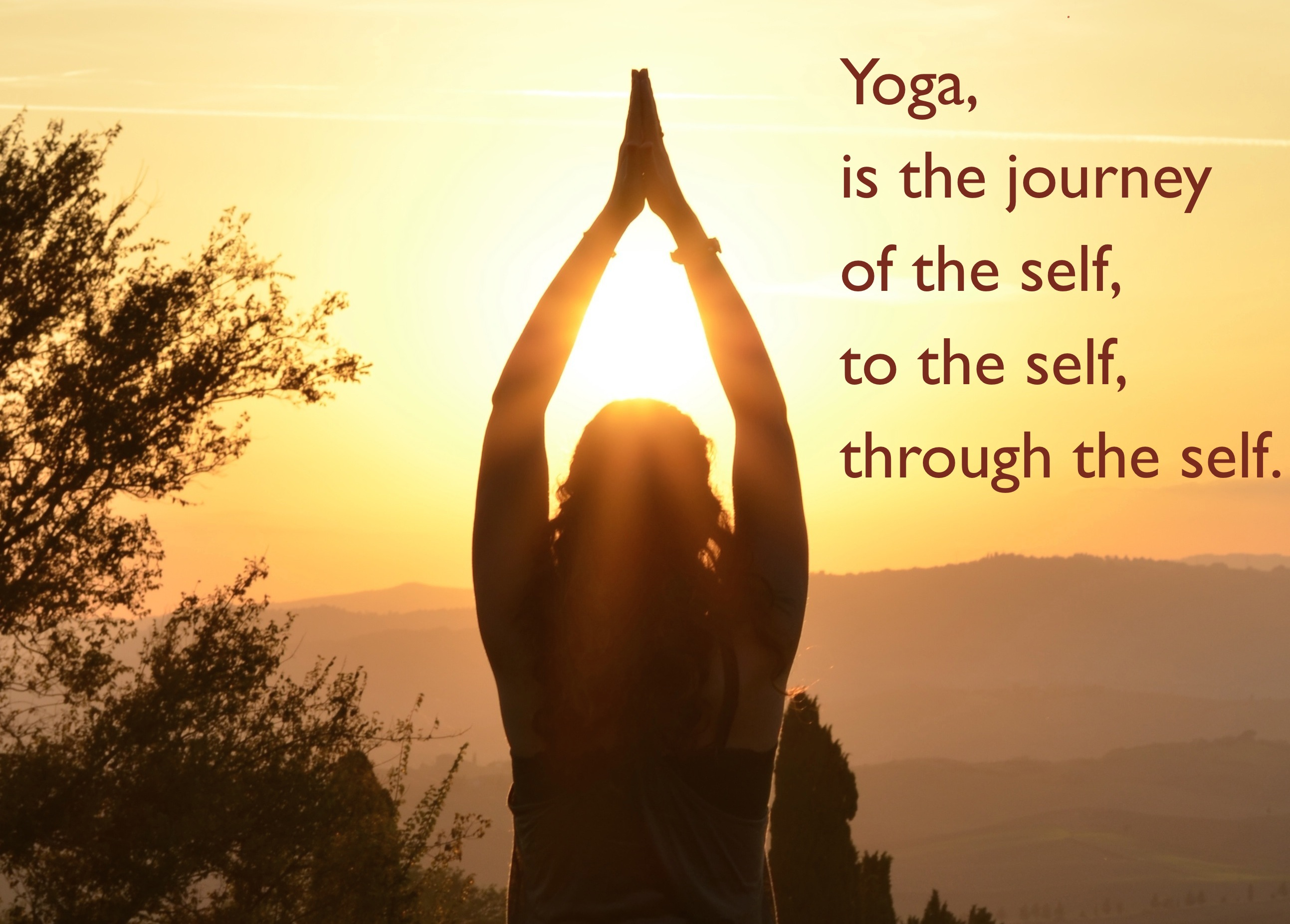 Quotes Yoga Quotes On Yoga & Life  Yogadivya