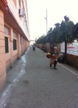 Parmarth Niketan Yoga Ashram-sabah erken ön sokak